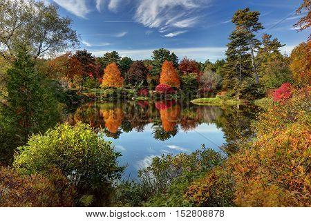 Reflection of fall foliage at Asticou Azalea Garden near Bar Harbor Maine.