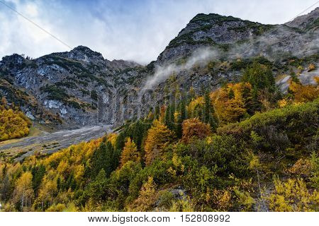 Autumn colorful fall trees high mountains scenery in the Alps. Austria Tyrol.