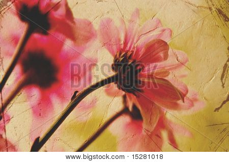 Feminine vintage floral greeting card.