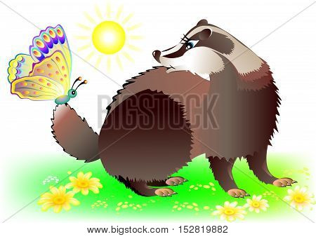 Illustration of badger looking at butterfly, vector cartoon image.