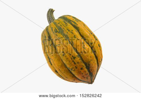Isolated Small Yellow and Green Acorn Squash on White