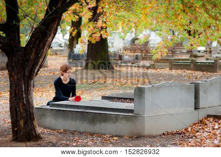 Young woman dressing in black laying a single red flower on a  grave in a cemetery in autumn