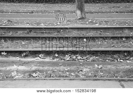 Empty Tram Rail Track