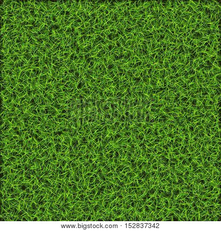 Green nature lawn grass. Background for design
