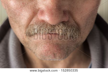 horizontal close up  image of a  caucasian man's face from the nose to bottom of chin  with mustache and facial hair.