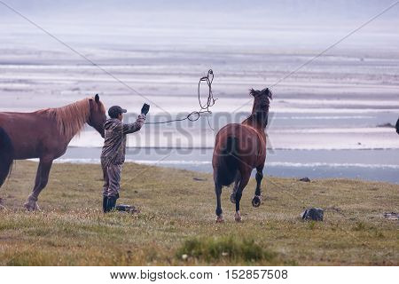 Man tries to catch the horse with rope