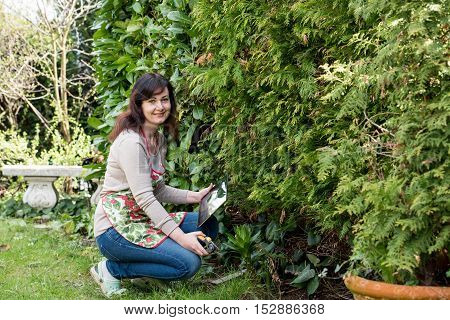 middle aged woman works in garden holds tablett pc