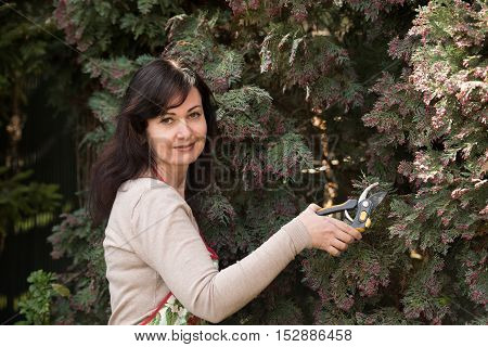 middle aged woman works in garden cuts trees