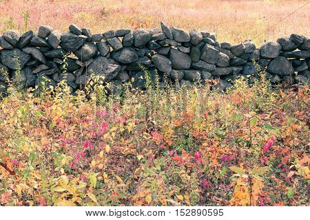 Toned image of stonewall in a meadow surrounded by colorful autumn colors.