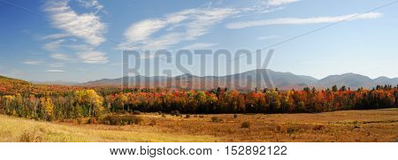 autumn mountain and colorful forest for design