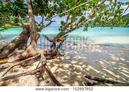 Violet Hammock Hang On Tree Over Wave At Beach