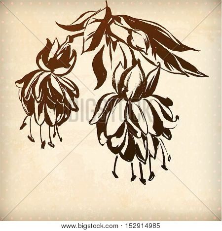 vector ornamental fuchsia flower card. illustration drawn with ink and brush. texture of paper and blots. place for your text