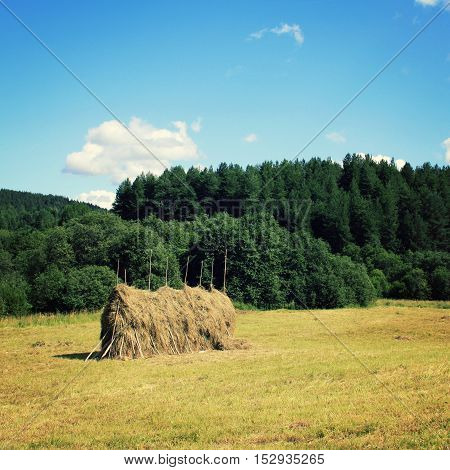 A Stack Of Hay On The Field. Countryside. Russia.