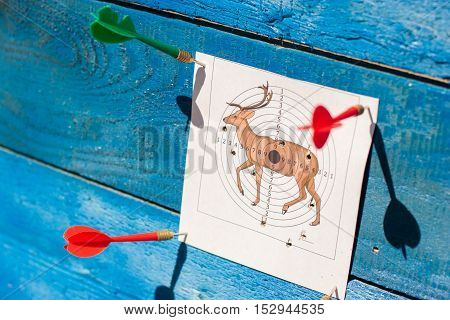 Firing at a target. Target on a blue background. The target punctured with a dart. Accurate shooting on a target. Firing at the purpose. A target in the form of a deer. Hunting target. Firing from the pneumatic weapon. The shot target.