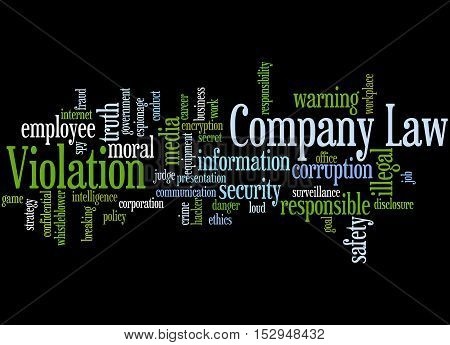Company Law Violation, Word Cloud Concept 3