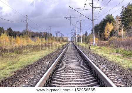 Railway tracks in the autumn a forest