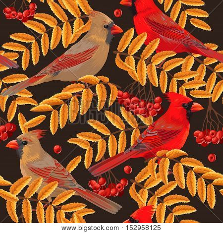 Cardinal, rowan berries and leaves vector seamless background