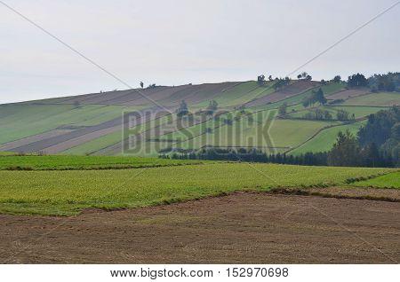 view of autumn landscape Niederösterreich Province in northeast Austria
