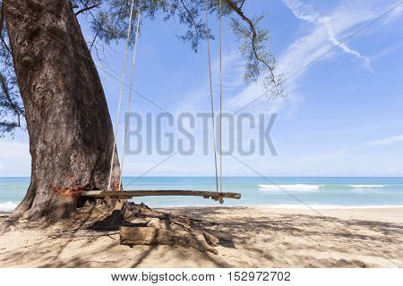 Swings on the tropical beach beautiful sand scenery background