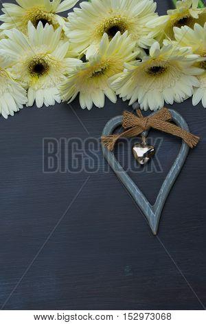 Cream gerbera flowers frame on dark wood with heart close up