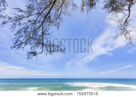 Beautiful tropical beach with tree frame for summer background