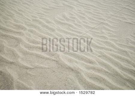Wind Blown Sand