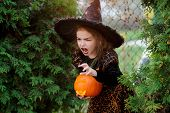Halloween. Little girl portrays the evil enchantress. She is wearing a dark dress and a hat. In the hands of the girl Jack-o-lantern. She tries to make an frightening look. Children like this day poster
