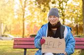 Homeless or poverty stricken elderly lady sitting on a park bench in the cold autumn weather holding a cardboard sign asking for Help poster