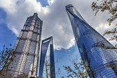 Three Skyscrapers Trees Reflections Liujiashui Financial District Shanghai China. Shanghai Tower Shanghai World Financial Center and Jin Mao Tower poster