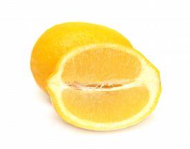 Lemon isolated on white background. Half. Flat. Fruit.