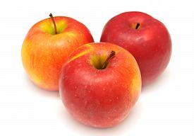 Red apple isolated on white background. Fruit. Flat.