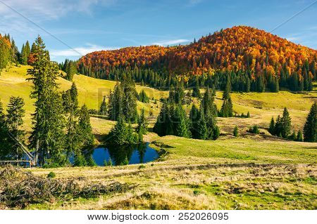 Pond On A Grassy Meadow Among Spruce Trees. Beautiful Autumn Landscape With Distant Mountain In Red