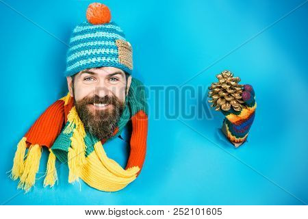 Smiling Bearded Man With Stylish Mustache And Conifer Cone In Hand. Hipster With Beard In Colorful H