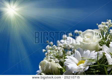 Boquet Of White Flowers On The Sun Sky Background