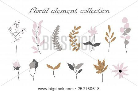 Vector Set Of Jungle Flowers In A Flat Style.