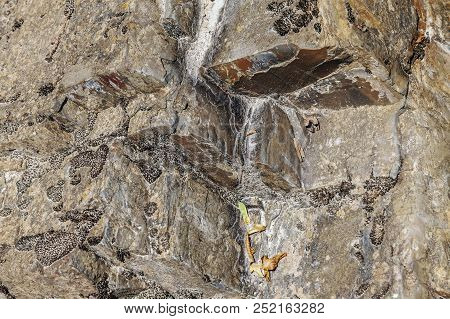Volumetric And Decorative Texture On The Rock. Photo Shows A Stone Texture. The Texture Of The Stone