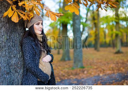 Portrait Of Beautiful Pregnant Woman Posing In Autumn Forest Or Park