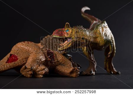 Carnotaurus With A Triceratops Body Nearby On Dark Background