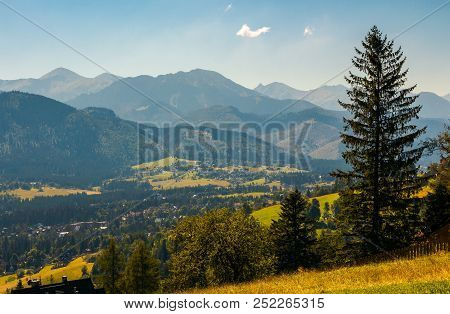 Beautiful Landscape Of Zakopane Valley. Popular Tourist Destination In Hight Tatra Mountains. Summer