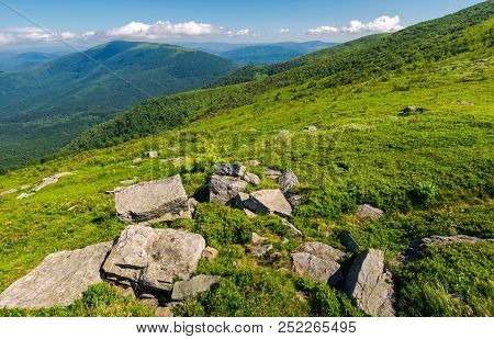 Fresh Summer Landscape In Mountains. Rocks On The Grassy Slope. Beautiful Location Of Carpathian Mou