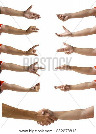 Clipping Path Of Hand Isolated On White. Multiple Female Caucasian Hands Gestures Isolated On White