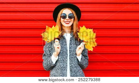 Pretty Autumn Smiling Cool Girl With Yellow Maple Leaves On A Red Background