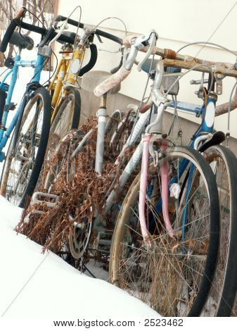 Old Forgotten Bicycles