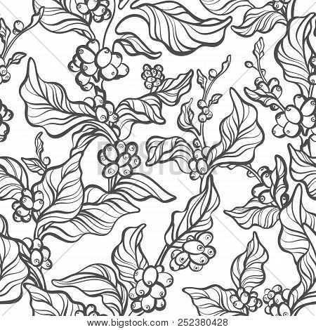 Vector Seamless Pattern Of Coffee Tree, Branch, Leaves, Bean. Natura Simple Print, Tropical Backgrou