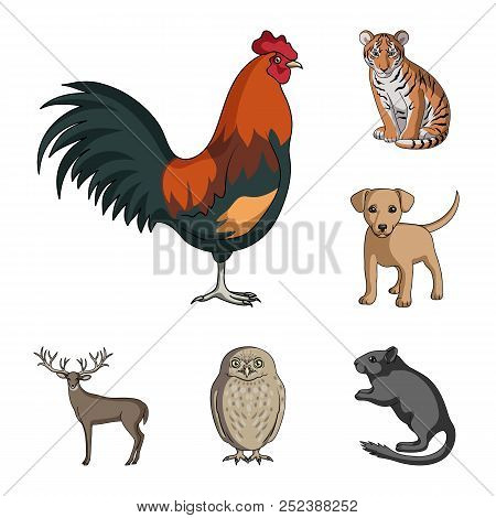 Realistic Animals Cartoon Icons In Set Collection For Design. Wild And Domestic Animals Vector Symbo