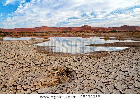 Desert Scene With Water