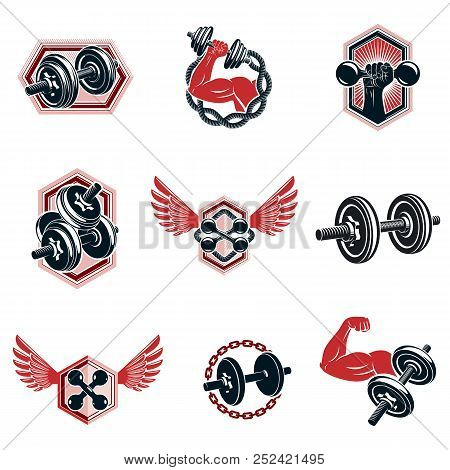 Set Of Vector Fitness Workout And Weightlifting Gymnasium Theme Illustrations Made Using Dumbbells A