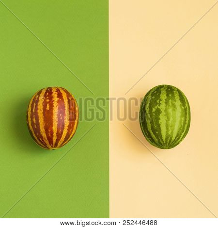 Mini Melon And Watermelon With Striped Skin On Contrasting Background. Hybrids, Result Of Selection.