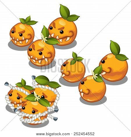 Trapped Fancy Monsters In The Form Of A Scary Toothy Oranges Isolated On A White Background. Vector