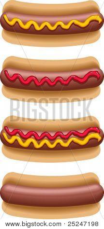 Hot Dogs Vector Illustration